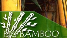 Welcome to the Big Bamboo Company at http://www.thebigbamboocompany.com